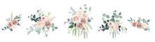 Blush Pink Roses, Ranunculus, Camellia Flowers Vector Design Bouquets