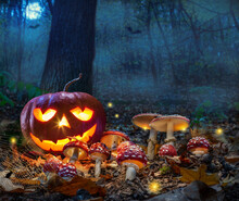 Halloween Theme With Glowing Pumpkin In Dark Autumn Forest With Amanita And Moon. Halloween Horror Background.