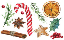 Isolated Candy Cane, Gingerbread, Anise Star, Branch Leaves, Red Berries, Holly Leaf, Cinnamon, Orange, Fir Tree Etc. Traced Vector Watercolor Set. Hand Drawn Illustration Collection On White Backgrou