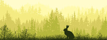 Horizontal Banner. Silhouette Of Hare Standing On Meadow In Forrest. Silhouette Of Animal, Trees, Grass. Magical Misty Landscape, Fog. Green, Black Illustration. Bookmark.