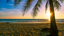 Beach Autumn Vacations Concept Background Nature Frame With Coconut Palm Trees On The Beach With Sun Light Flare Beautiful Sunset Or Sunrise Landscape Background