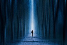 Man Walking Through A Surreal Forest