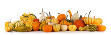 Harvested Pumpkins Isolated On White Background