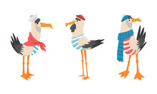 Seagull Sailor Character In Striped Vest And Hat Vector Set