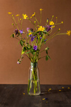 Bouquet Of Wild Flowers On Brown Background, Healing Plant Collection, Still Life Composition