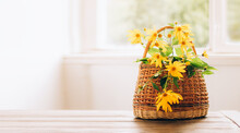 Yellow Garden Autumn Flowers In A Basket On A White Table. Vintage Still Life. Front View Copy Space
