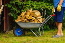 Man Pulling Wheelbarrow With Firewood