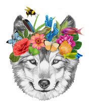 Portrait Of Wolf With A Floral Crown.  Flora And Fauna. Hand-drawn Illustration, Digitally Colored.