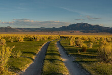 Dirt Road Near Mono Lake, California, USA, In The Early Morning, With Mountains In The Background And Large Blue Clopy-space