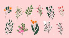 Collection Of Icons With Plants. Organic Art With Flower, Branches And Leave. Design Elements For Poster, Social Network And Postcard. Cartoon Flat Vector Set Illustration Isolated On Pink Background