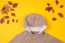 Fashionable Children's Clothing (canvas Jacket). Outfit For A Little Boy. Winter, Autumn Collection. Organic Cotton. Top View, Flat Lay, Autumn Baby Look