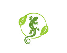 Gecko With Nature Leaf Surrounding