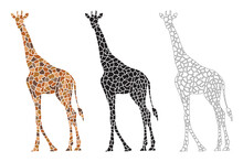 Decorative Giraffe Tiles Art Vector Graphic Design Template