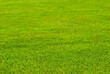 Soccer field texture close up. Grass in the stadium. Finely mown lawn for sports grounds.
