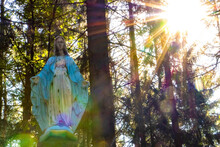 The Sun's Rays Shine Through The Trees On The Statue Of The Virgin Mary