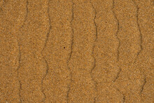 Background Texture Formed By Water On The Beach Sand Creating Curious Shapes