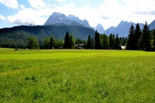 Large Green Meadows Of Moso