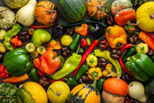 Different Types Of Bitter And Sweet Peppers And Decorative And Edible Pumpkins, Autumn Vegetable Background, Organic Healthy Farm Products