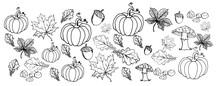 Liście, Jesień, Ilustracja, Projekt, Rysunek , Szkic
