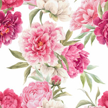 Beautiful Vector Seamless Floral Pattern With Hand Drawn Watercolor Gentle Pink Peony Flowers. Stock Illuistration.
