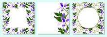 Set Of Square Botanical Template For Greeting Cards Or Invitations. Chinaberry Flowers. Place For Your Text. Hand Drawn Vector Illustration