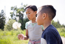 Boy And Girl Blowing Dandelion Seedhead