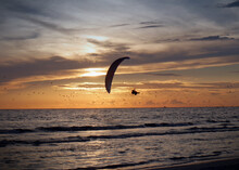 A Silhouette Of A Person Flying An Ultralight In Front Of An Sunset Over The Gulf Of Mexico.  The Sky Filed With Flying Seagulls And Clouting Clouds Reflecting Yellow, Orange, And Blue.