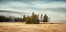 Misty Morning In Yellowstone National Park, Wyoming, USA.