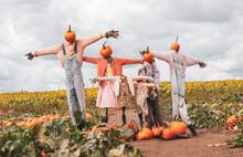 Spooky Scarecrows Pumpkins Field
