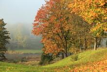 Morning Autumn Fog, Selective Focus. Kuldiga, Latvia. High Quality Photo