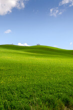 Landscapes In The Countryside Of Tuscany In Italy