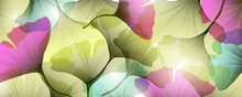 Art Background With Transparent Ginkgo Leaves Of Different Colors For Packaging Design, Web Banners And Social Networks