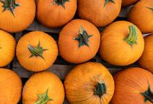 Looking Down On A Pallet Of Orange Pumpkins