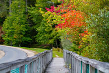 Early Autumn Changing Foliage And Footbridge