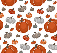 Seamless Autumn Pattern With Various Gray And Orange Pumpkins On White Background. Vector Texture With Flat Hand Drawn Vegetables. Wallpaper With Garden Harvest