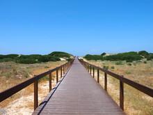 Beautiful Island With Wild Dunes Sao Jacinto Or San Antonio In Portugal