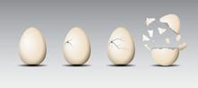 Realistic Cracked Eggs Isolated.White Eggshell Cracking Stages. Broken Egg Easter Element Design.