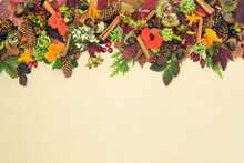 Autumn Harvest Festival Background Border On Hemp Paper With European Flora, Fauna And Food. Natural Composition For The Season Of Fall And Thanksgiving. Top View, Copy Space.