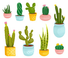 Set Of Cacti And Succulents In Ceramic Pots.Collection Of Exotic Indoor Plants In Cartoon Style.Vector Graphics On A White Background.