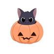 Słodki czarny kot chowający się w wydrążonej dyni. Ilustracja Halloweenowa. Cukierek albo psikus! Uroczy ręcznie rysowany mały kotek. Ilustracja wektorowa.