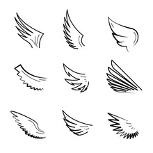 Set Abstract Collection Hand Drawn Wings Flight Feathered Doodle Concept Vector Design Outline Style On White Background Isolated Bird Wildlife