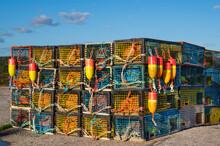Lobster Traps