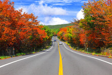 제주도에 있는 1100도로의 가을 풍경이다.