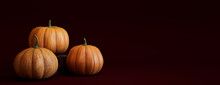 Contemporary Autumn Banner With A Collection Of Pumpkins On Deep Plum Red Background.