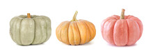 Fall Pumpkins Isolated On A White Background. Assortment Of Green, Orange And Pink Heirloom Pumpkins. Blue Doll, Autumn Frost And Porcelain Doll Varieties.