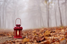 Red Lantern In Autumn Park