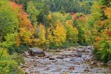Early Season Fall Foliage Colors In New England