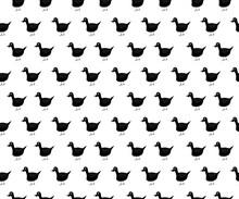 Black Duck Cartoon Animal Hand Drawn Seamless Background And White Background