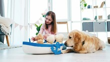 Little Girl Put Toys To Marine Boat Ship And Playing With Them. Golden Retriever Dog With Child At Home