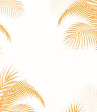 Palm Leaves For Mock Insert Text Here For Gift Card And Blogs, Website Texture Template Background With Frame Plant Vector Mock Gift Card Blog  Palm Trees Light Brown